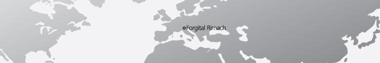 Forgital Rimach